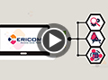 Ericom Remote Access Solutions Overview